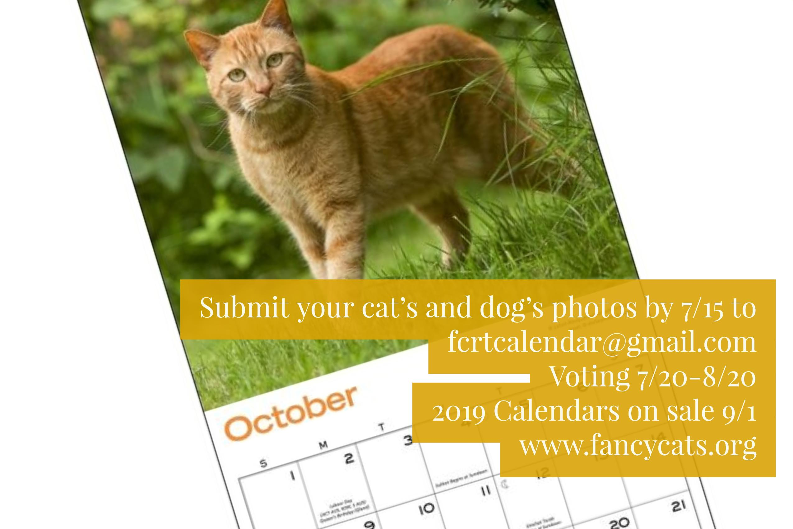 2019 Calendar Photo Submissions
