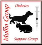 DiabetesSupportGroup